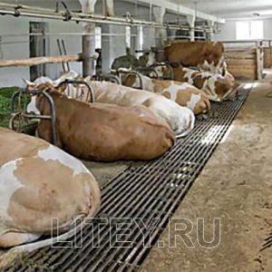 Щелевой пол из металла для коров, с
